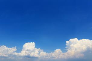 晴れた夏の空に浮かぶ雲の風景の写真素材 [FYI01269151]