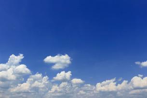 晴れた夏の空に浮かぶ雲の風景の写真素材 [FYI01269152]