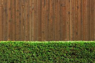 木の塀と緑の生垣の写真素材 [FYI01269158]
