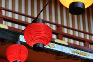 赤い提灯が並ぶ日本の景観の写真素材 [FYI01269164]