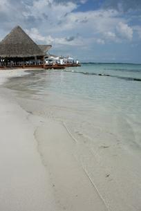 ドミニカのビーチの写真素材 [FYI01269231]