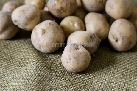 麻布の上のジャガイモの写真素材 [FYI01269239]
