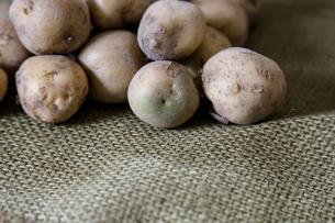 麻布の上のジャガイモの写真素材 [FYI01269241]