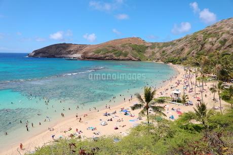 ハワイ オアフ島のハナウマ湾の写真素材 [FYI01269303]