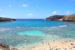 ハワイ オアフ島のハナウマ湾の写真素材 [FYI01269304]
