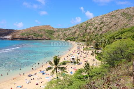 ハワイ オアフ島のハナウマ湾の写真素材 [FYI01269305]