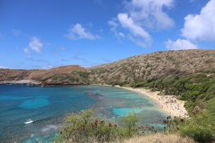ハワイ オアフ島のハナウマ湾の写真素材 [FYI01269306]