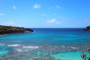 ハワイ オアフ島のハナウマ湾の写真素材 [FYI01269307]