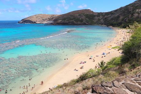 ハワイ オアフ島のハナウマ湾の写真素材 [FYI01269308]