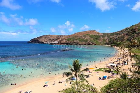 ハワイ オアフ島のハナウマ湾の写真素材 [FYI01269309]