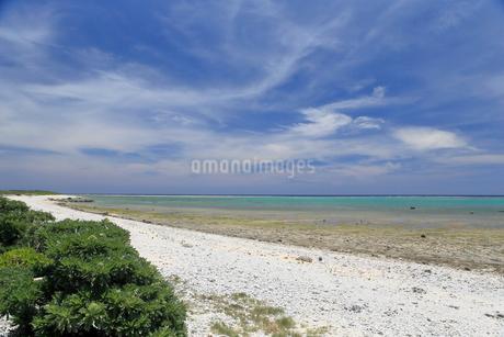 石垣島 白保海岸の写真素材 [FYI01269664]