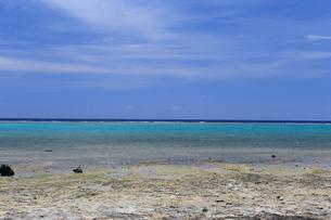 白保海岸 石垣島の写真素材 [FYI01269668]
