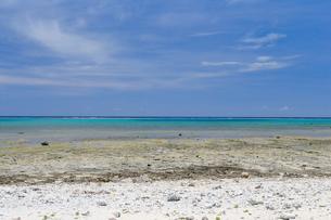 白保海岸 石垣島の写真素材 [FYI01269673]