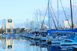 ハワイオアフ島 ヨットハーバー 青い空と青い海の写真素材 [FYI01269861]