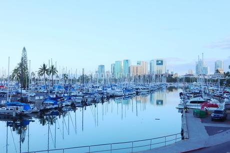 ハワイオアフ島 ヨットハーバー 青い空と青い海の写真素材 [FYI01269864]