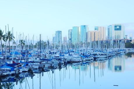 ハワイオアフ島 ヨットハーバー 青い空と青い海の写真素材 [FYI01269865]