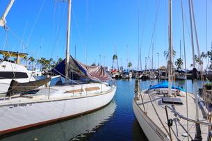 ハワイオアフ島 ヨットハーバー 青い空と青い海の写真素材 [FYI01269869]