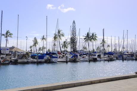 ハワイオアフ島 ヨットハーバー 青い空と青い海の写真素材 [FYI01269871]