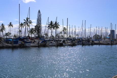 ハワイオアフ島 ヨットハーバー 青い空と青い海の写真素材 [FYI01269872]