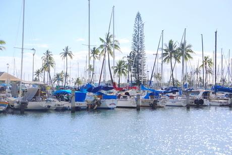 ハワイオアフ島 ヨットハーバー 青い空と青い海の写真素材 [FYI01269874]
