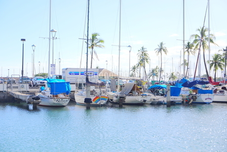 ハワイオアフ島 ヨットハーバー 青い空と青い海の写真素材 [FYI01269875]