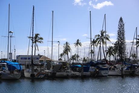 ハワイオアフ島 ヨットハーバー 青い空と青い海の写真素材 [FYI01269876]