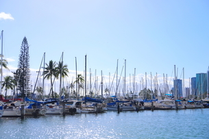 ハワイオアフ島 ヨットハーバー 青い空と青い海の写真素材 [FYI01269877]