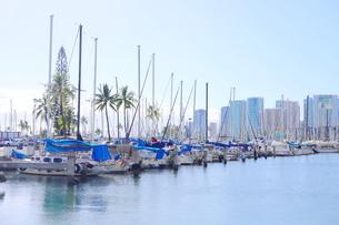 ハワイオアフ島 ヨットハーバー 青い空と青い海の写真素材 [FYI01269878]
