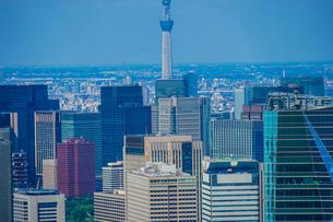 東京スカイツリーと都市風景の写真素材 [FYI01269989]