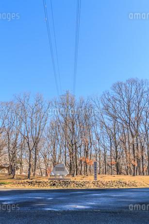 冬の加曽利貝塚の風景の写真素材 [FYI01270075]