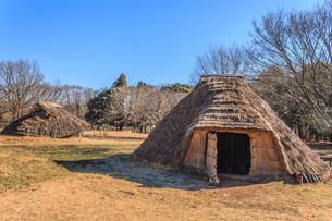 冬の加曽利貝塚の復元された住居の写真素材 [FYI01270088]