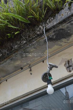 南国沖縄の壊れてぶら下がっている電灯の写真素材 [FYI01270107]