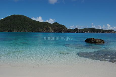 南国沖縄の渡嘉敷島のエメラルドグリーンの海の写真素材 [FYI01270148]