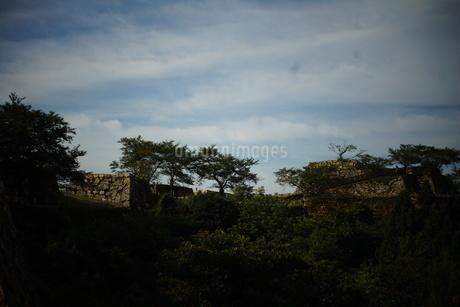 竹田城址の写真素材 [FYI01270206]