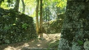 奈良高取城址(山頂の石垣)の写真素材 [FYI01270284]
