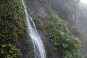 岩肌を流れる小さな滝の写真素材 [FYI01270391]