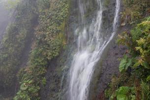 岩肌を流れる小さな滝の写真素材 [FYI01270393]