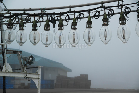 朝の漁港 漁船の集魚灯の写真素材 [FYI01270395]