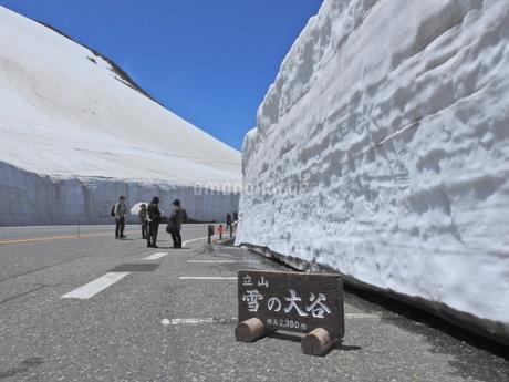 立山 雪の大谷の写真素材 [FYI01270457]