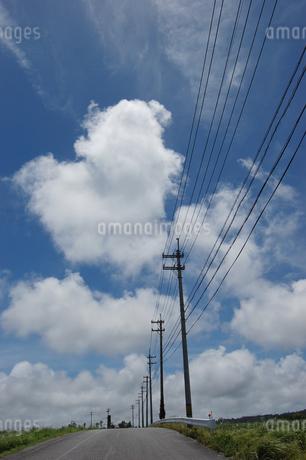 南国沖縄の田舎道に電柱と電線が続いているの写真素材 [FYI01270479]