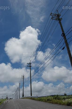 南国沖縄の田舎道に電柱と電線が続いているの写真素材 [FYI01270480]