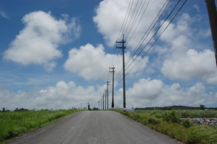 南国沖縄の田舎道に電柱と電線が続いているの写真素材 [FYI01270481]