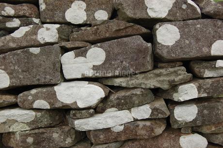 南国沖縄の古い石積みの石垣に白い模様の写真素材 [FYI01270509]