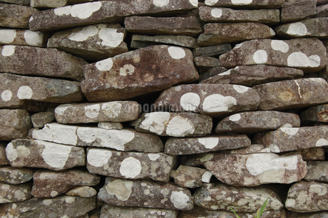 南国沖縄の古い石積みの石垣に白い模様の写真素材 [FYI01270510]