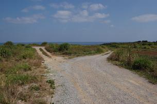 南国沖縄の田舎の海へ続く別れ道の写真素材 [FYI01270512]