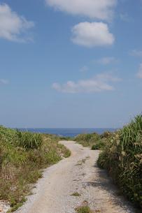 南国沖縄の田舎の海へ続く道の写真素材 [FYI01270513]