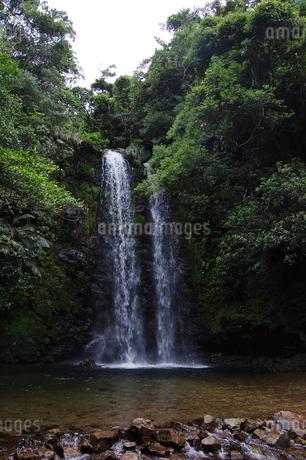 南国沖縄の垂直に落ちる滝の写真素材 [FYI01270531]