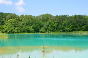五色沼の写真素材 [FYI01270634]