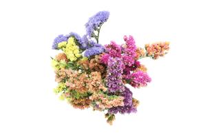 スターチスの花束の写真素材 [FYI01270719]