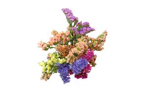 スターチスの花束の写真素材 [FYI01270720]